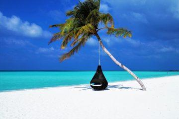 black friday wakacje